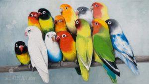Obraz s barevnými papoušky